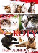Okładka książki - Koty. Nasi ulubieńcy