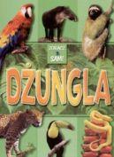 Okładka ksiązki - Dżungla. Zobacz sam