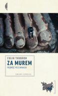 Okładka ksiązki - Za Murem. Podróż po Chinach