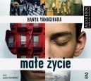 Okładka ksiązki - Małe życie. Audiobook
