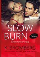 Okładka książki - Slow Burn. Kropla drąży skałę. Seria Driven