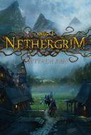 Okładka książki - Nethergrim
