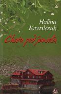 Okładka ksiązki - Chata pod jemiołą