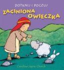 Okładka ksiązki - Dotknij i poczuj. Zaginiona owieczka