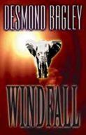 Okładka - Windfall