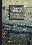 Okładka ksiązki - Jesień w Brukseli