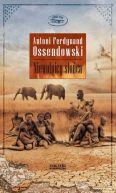 Okładka książki - Niewolnicy słońca