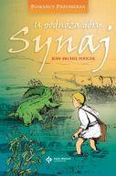 Okładka książki - U podnóża góry Synaj