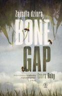 Okładka książki - Zapadła dziura Bone Gap