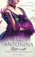 Okładka ksiązki - Maria Antonina. Z pałacu na szafot