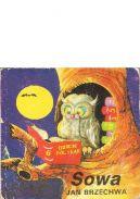 Okładka książki - Sowa