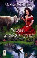 Okładka ksiązki - Wiedźma z Wilżyńskiej Doliny