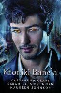 Okładka książki - Kroniki Bane'a