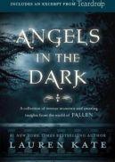 Okładka ksiązki - Anioły w ciemności