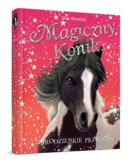 Okładka książki - Magiczny konik. Czarodziejskie przygody