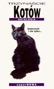 Okładka książki - Trzynaście kotów