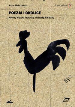 Okładka książki - Poezja i okolice. Między krytyką literacką a historią literatury