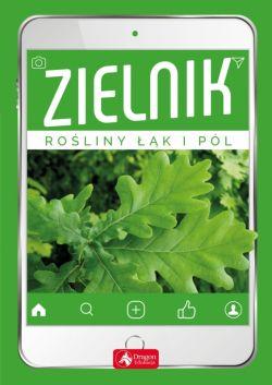 Okładka książki - Zielnik. Rośliny łąk i pól