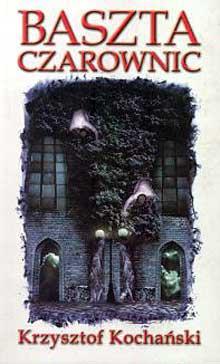 Okładka książki - Baszta czarownic