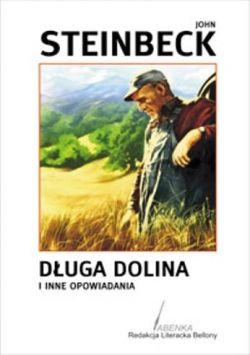 Okładka książki - Długa dolina