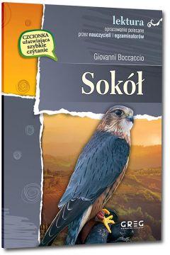 Okładka książki - Sokół