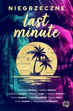 Okładka książki - Niegrzeczne last minute