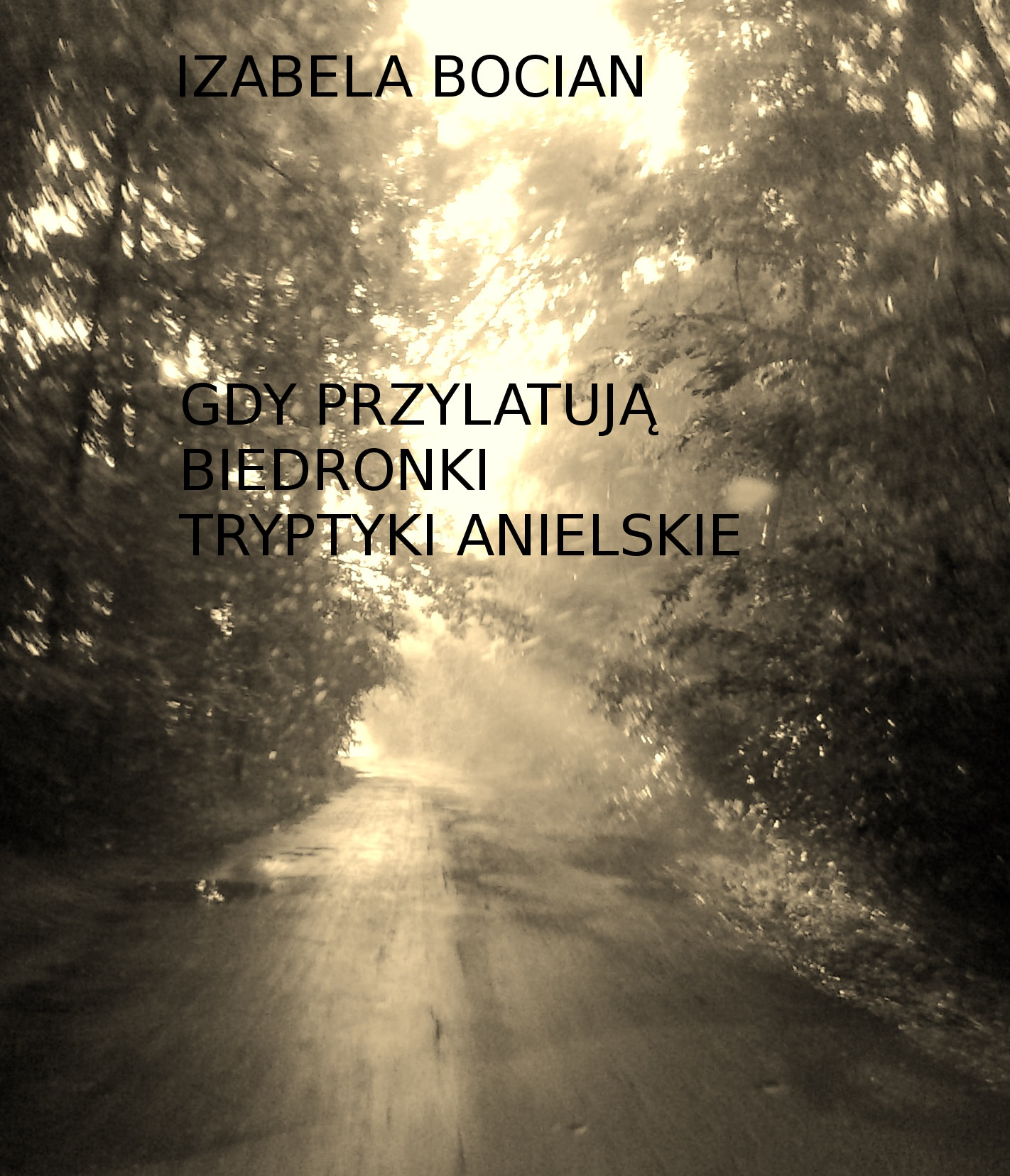 Okładka książki - Gdy przylatują biedronki. Tryptyki anielskie