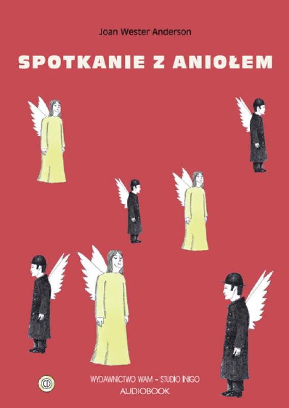 Okładka książki - Spotkanie z aniołem
