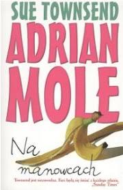 Ok�adka - Adrian Mole. Na manowcach