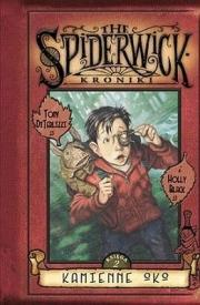 Ok�adka - Kroniki Spiderwick 2. Kamienne oko