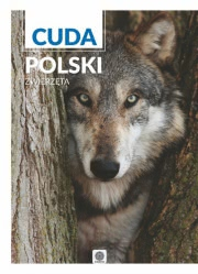 Ok�adka - Cuda Polski Zwierz�ta