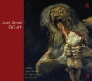 Ok�adka - Panna z mokr� g�ow�. Audiobook