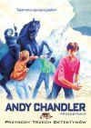 Okładka książki - Tajemnica jęczącej jaskini (t. 9) - Przygody Trzech Detektywów