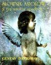 Ok�adka - S�ownik anio��w w tym anio��w upad�ych