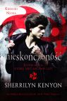 Okładka książki - Kroniki Nicka. Nieskończoność