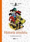 Okładka ksiązki - Historia amuletu