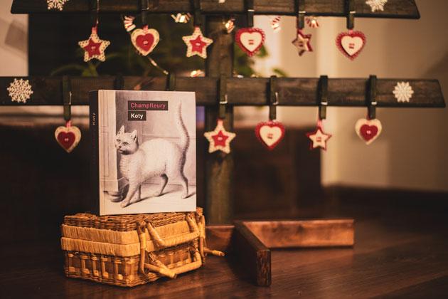 Publicystyka - 10 niezwykłych ciekawostek o... kotach